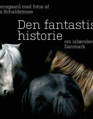 Den fantastiske historie om islænderen i Danmark (Bog)
