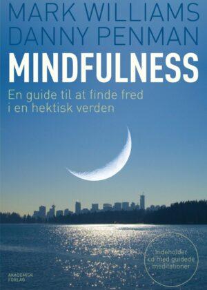 Mindfulness (Bog)
